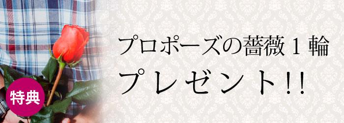プロポーズの薔薇一輪・プレゼント